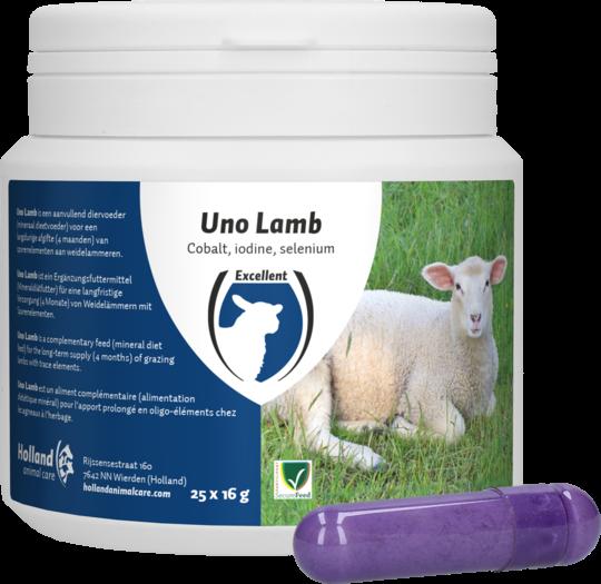 Uno Lamb Lam 25 stuks