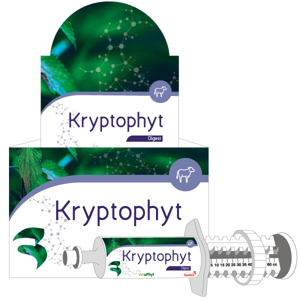 Kryptophyt Orale Pasta Kalf 12 x 60 ml