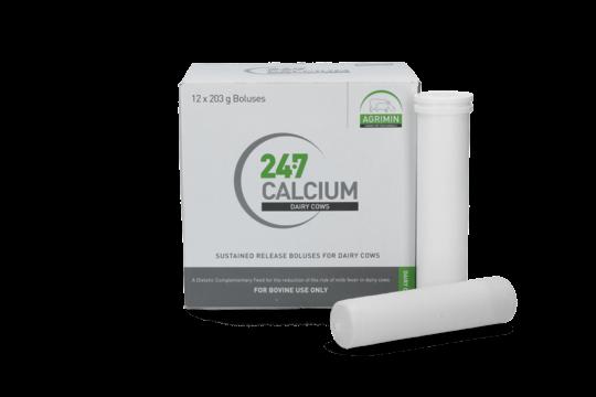 Calcium Bolus 24/7 12 stuks